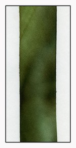 Mossy Rock Silk Ribbon 25mm